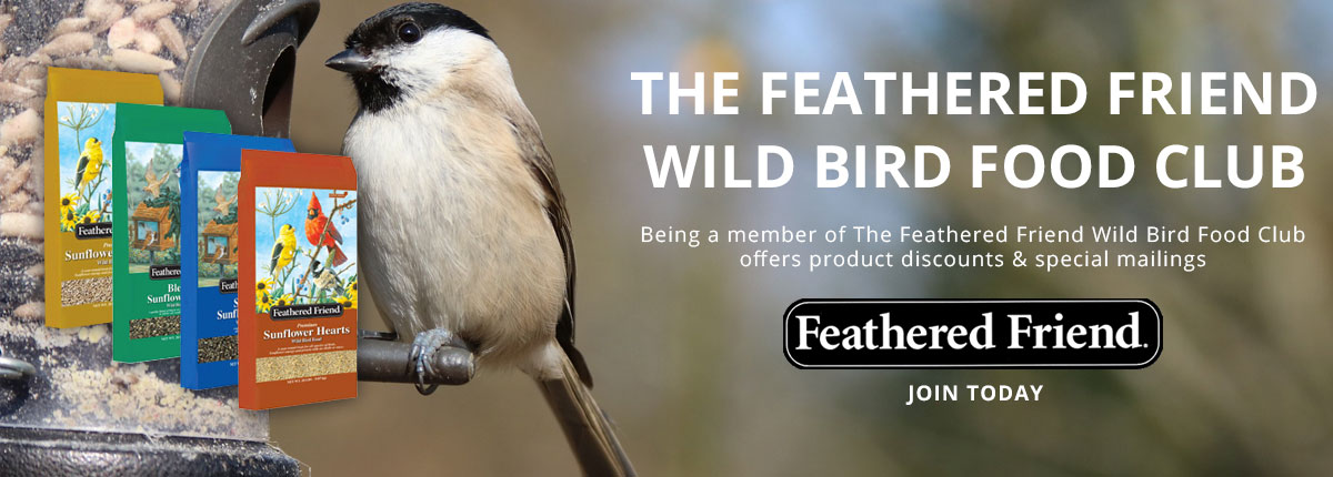 Agway Feathered Friend Wild Bird Food club intro banner
